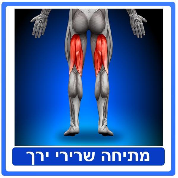 טיפול פיזיותרפיה לאחר מתיחה/קרע בשרירי ירך קדמיים ואחוריים