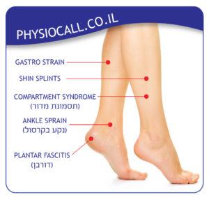 כאבי שוקיים, תסמונת מדור, כאב בקרסול, דורבן, הקע בקרסול, Gastro Strain