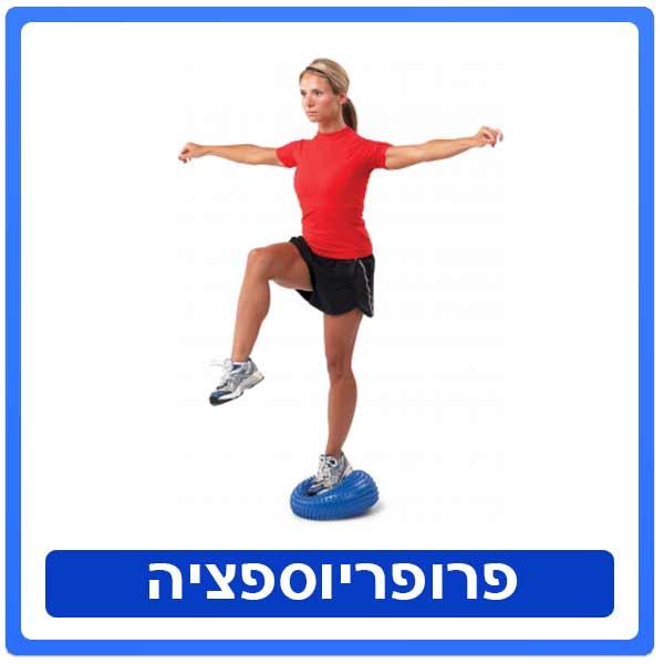 תרגילי פרופריוספציה- שיווי משקל- בשיקום הפיזיותרפי תרגילי פרופריוספציה - שיווי משקל